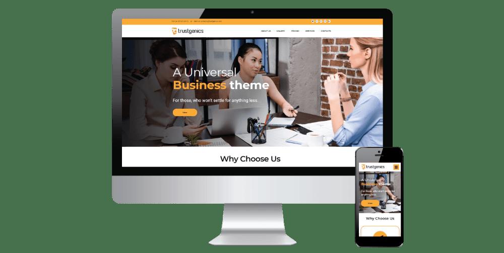 project 10 website development